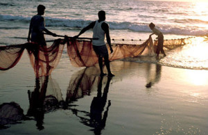 50-Indian-fishermen-arrested-by-Sri-Lankan-Navy