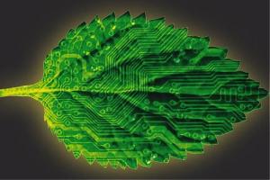 Bionic leaf 2.0