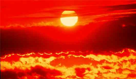 Heat Wave Death toll crossed 800 in India