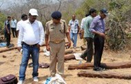 Red sanders in Andhra pradesh use Transit permit for smuggiling: Police