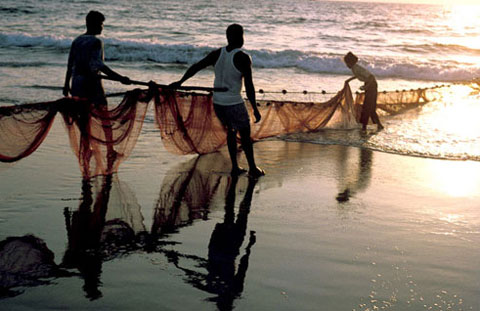 16 Indian fishermen impounded by Srilankan navy