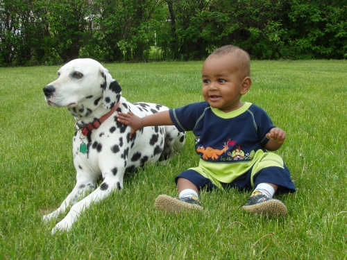 Pet Dogs Could Help Children Avoid Asthma