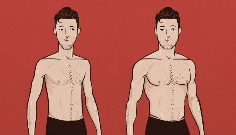 Muscle Building Formula, From Scrawny Guy to Become Brawny Guy