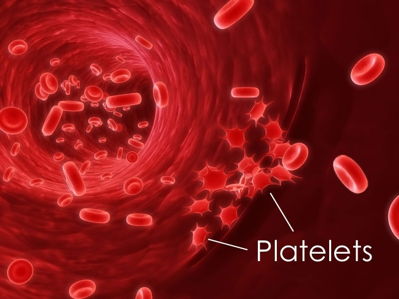 Huge leap to mass produced platelets