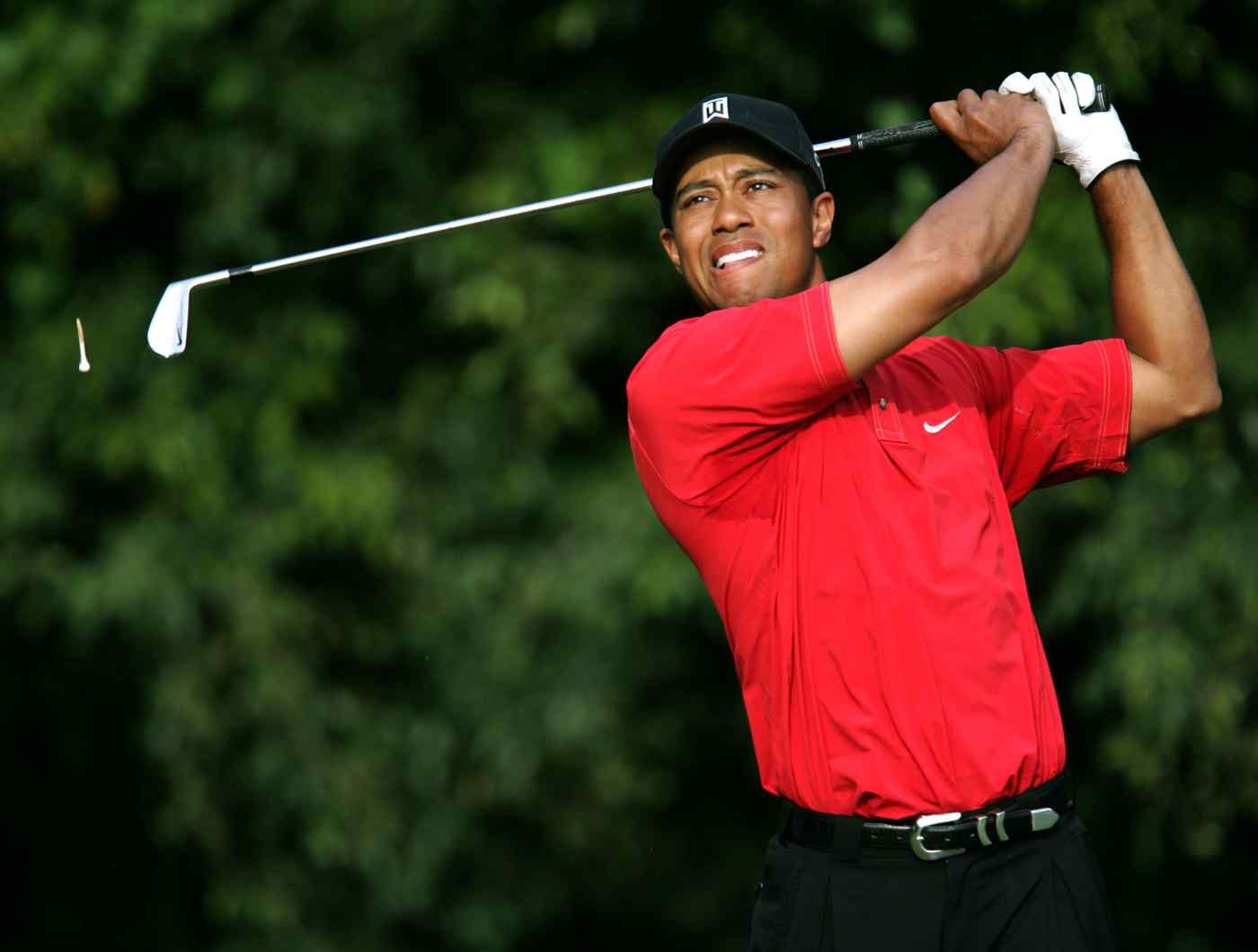 Sports: Everything stack over Tiger Woods