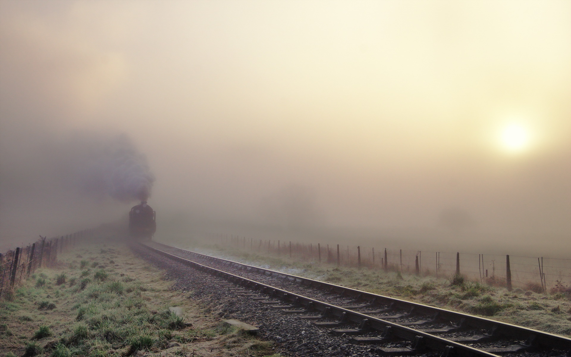 Worried of train delays due to fog? Now, plan ahead with RailYatri's fog alerts!