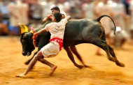 Tamil Nadu Chief Minister Panneerselvam assures that Jallikattu will be held in two days