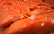 Scientists warn that US salmon may carry Japanese tapeworm