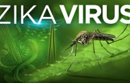 Zika Virus Transmission is not only through Mosquito Bites