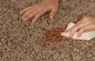 Ways to Get Rid of Carpet Mold