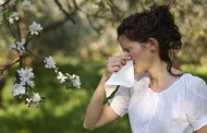 Mild winter weather kick-starts allergy season
