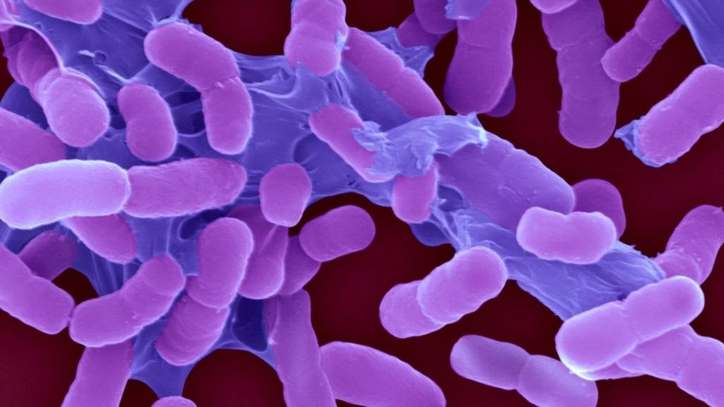 threatening superbugs